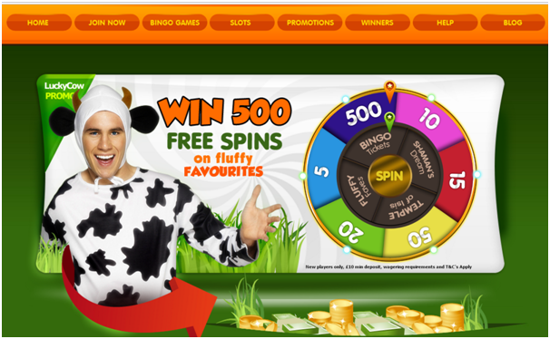Lucky Cow Bingo