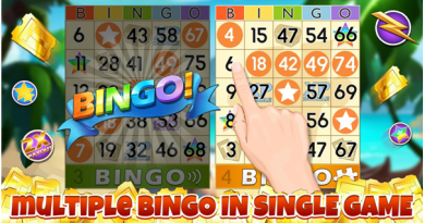 How to play at Bingo Party