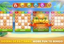 The Bingo Patterns And How Do They Work In Bingo Game