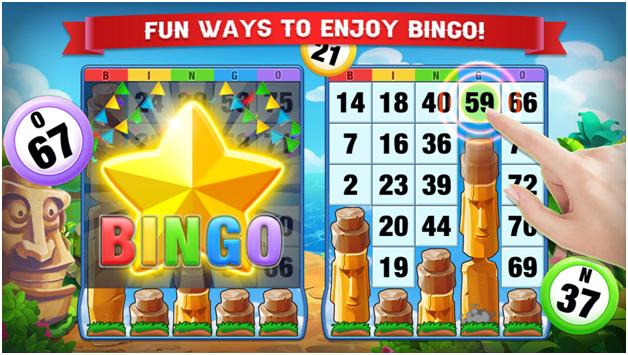 Bingo Amaze